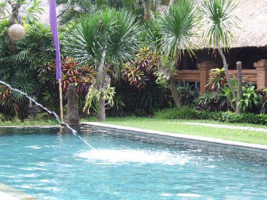 Tandjung Sari Hotel: Pool