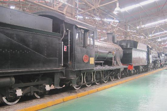 Outeniqua Transport Museum: Loco #1056 + others