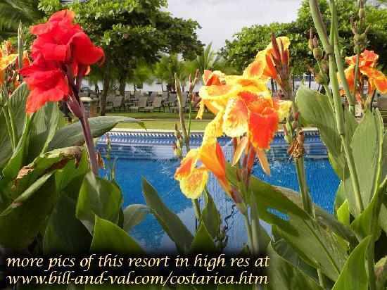 Los Suenos Marriott Ocean & Golf Resort: beautifully landscaped