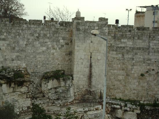 Golden Walls Hotel: view of the old city walls from my room