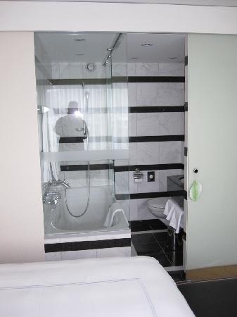 Room 1501, Swissotel Zurich