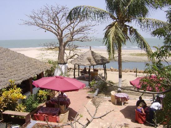 Calypso Bar and Restaurant: View from Calypso's treehouse