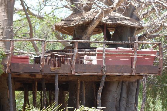 Calypso Bar and Restaurant: The treehouse