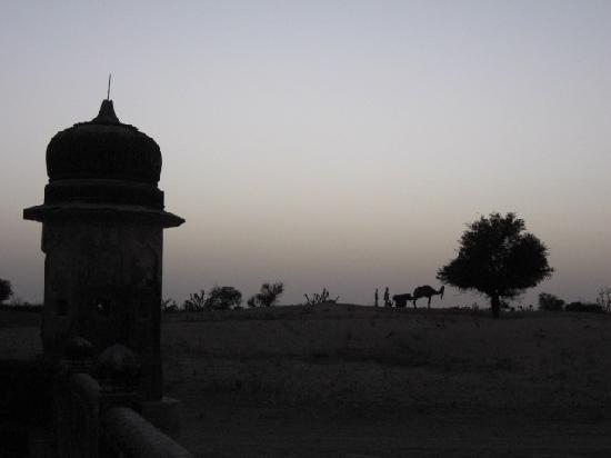 Ramgarh Fresco: Camel ride to the dunes