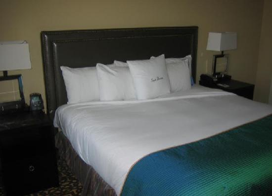 Doubletree by Hilton Detroit Downtown - Fort Shelby: Bed