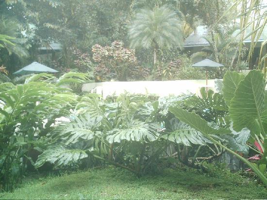 Magellan Boutique Hotel: un jardin et une piscine divin!!!!