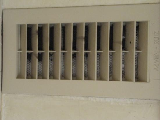 Rallye: rejilla ventilacion llena mierda lo mejor para alergicos