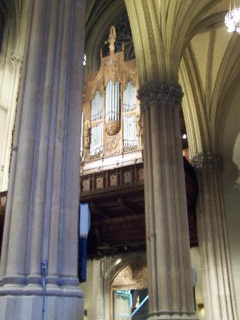 St. Patrick's Cathedral: organo