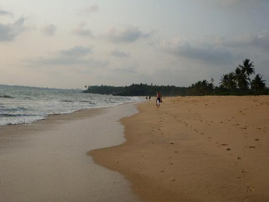 Kannur Beach House: Thottada beach