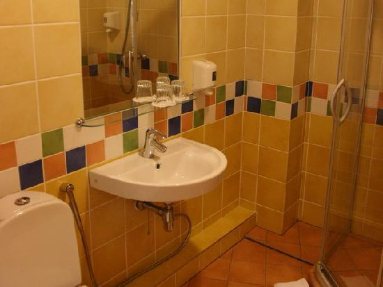 Hotel Sonata: Standard double room