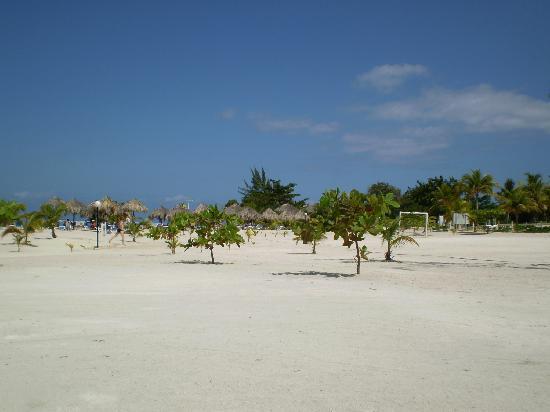 Grand Bahia Principe Jamaica: Beach area right.