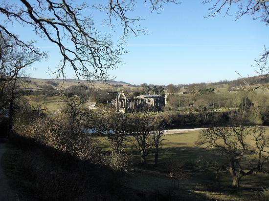 Bolton Abbey: view from the strid