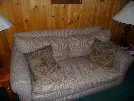 Knickerbocker Mansion Country Inn: Filthy Old Sofa