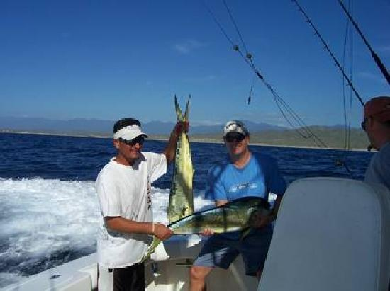 Marlin picture of pisces sportfishing cabo san lucas for Pisces fishing cabo