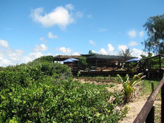 White Pearl Resorts, Ponta Mamoli: Lodge View