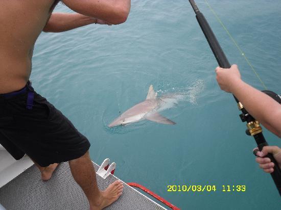 Reef View Hotel: good fishing
