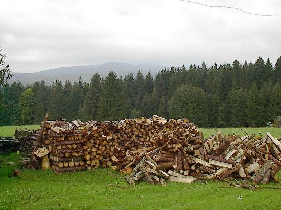 Mauth, Deutschland: gathering logs for the fire