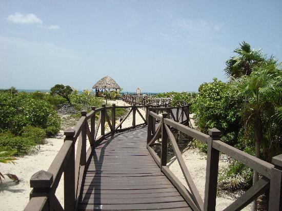 Melia Las Dunas: boardwalk to the beach