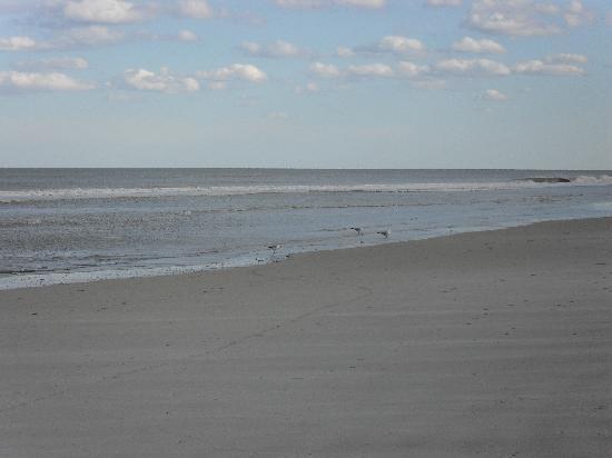 St Augustine Island Inn: The beach
