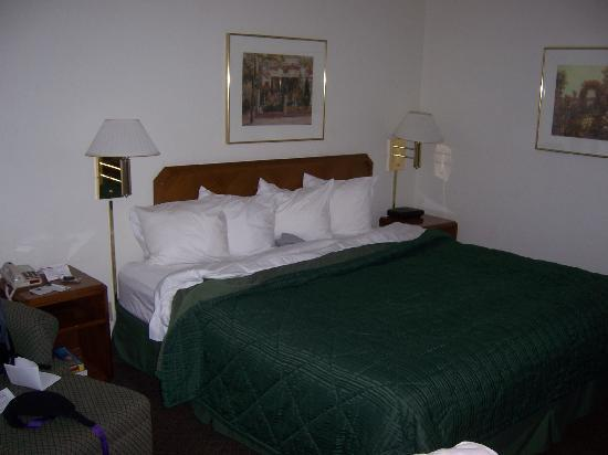 Quality Inn Northlake: Room