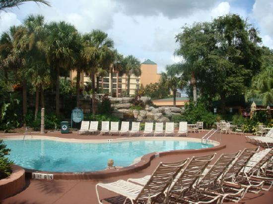 Radisson Resort Orlando-Celebration: pool