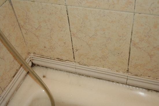 Hotel Perfect: Dirty, disgusting bathroom - when was this last cleaned?