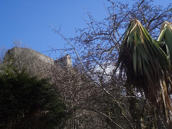 Castlecroft: Stirling Castle from the back deck