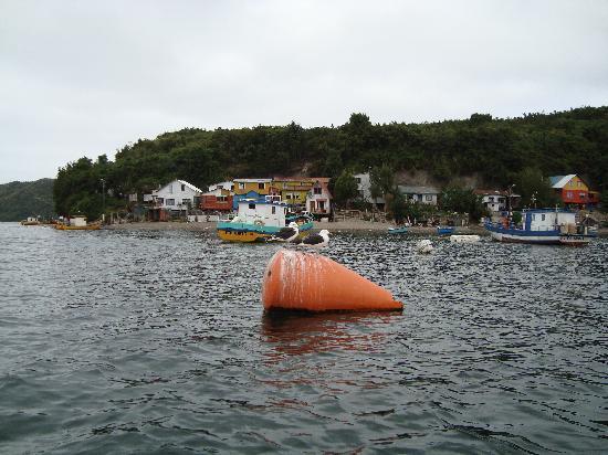 isla de Tenglo. Puerto Montt