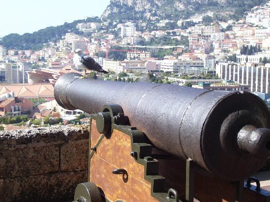 Prince's Palace: cannoni sulla piazza