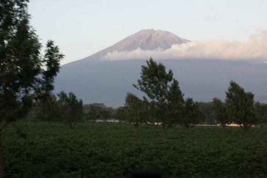 Mt Meru in Arusha
