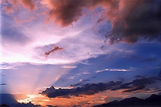 Tucson, AZ: ANGELS PAINTING FANTASIES