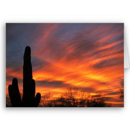 Tucson, AZ: PASSIONATE SKIES...Holding Heaven, Hugging Earth