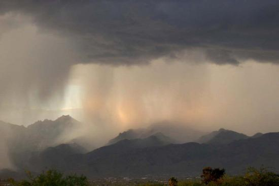 Tucson, AZ: THE UNEXPECTED -                                                                     A  downpour