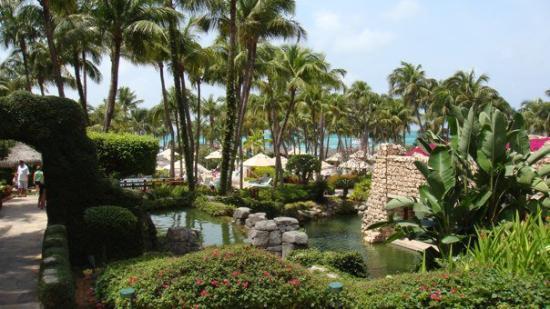 Oranjestad, Aruba: DSC01671