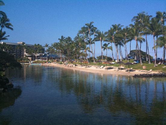 Hilton Waikoloa Village: saltwater Lagoon