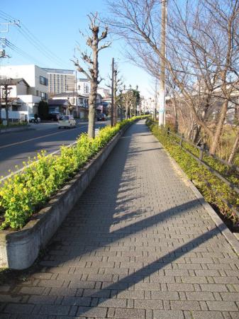 Nearby Richmond Hotel in Narita