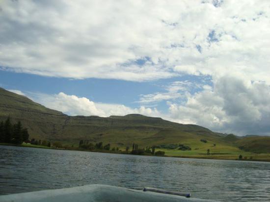 Underberg, Sør-Afrika: DSC08290