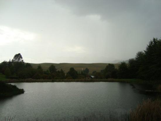Underberg, Sør-Afrika: DSC08382