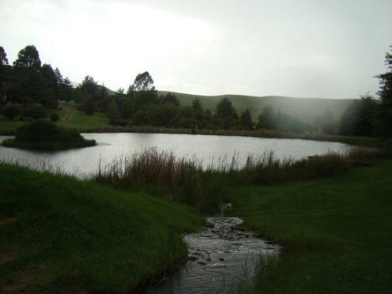 Underberg, Sør-Afrika: DSC08385