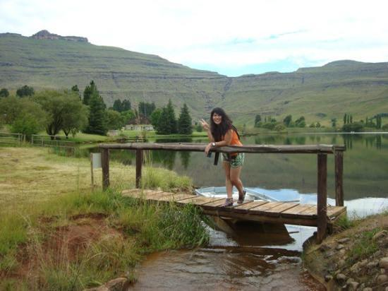 Underberg, Sør-Afrika: DSC08215