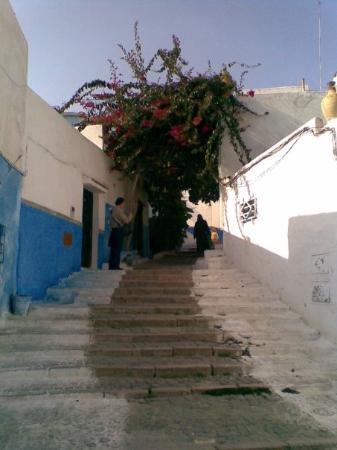 Bilde fra Rabat