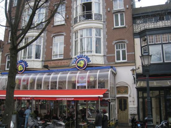 Cerca De La Estacion Picture Of The Bulldog Amsterdam