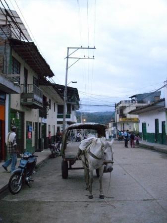 Bilde fra San Agustin