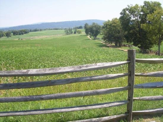 Antietam National Battlefield: The field here is where Union forces moved toward Bloody Lane.  Movement would have been from le