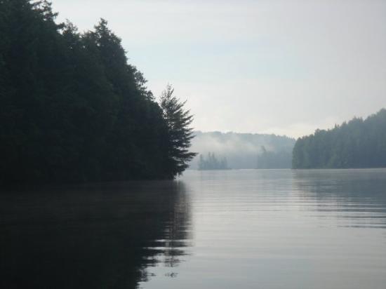 Bilde fra Algonquin Provincial Park