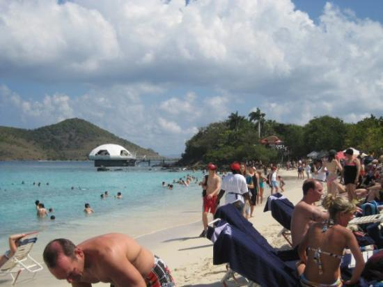ST. THOMAS: Coki Beach ... and some of the fun Canadians we met.  ... and by fun I mean drunk.