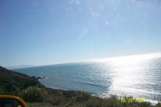 Bilde fra Tiburon