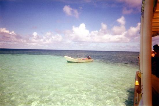 Sainte-Anne, Martinique: Martinique. Les piscines naturelles dans l'océan,remontées de fonds blancs ou l'on a pied et ou