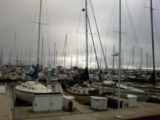 Monterey, CA: Ohh.. i love sea boats :)
