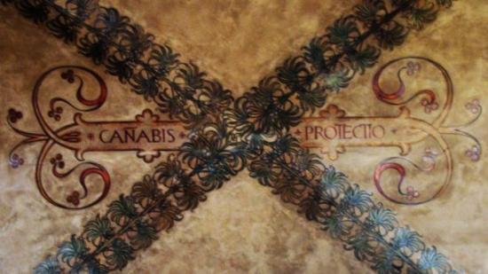 Bologna (Italy)(41) - Canabis protectio?! - pintada en el techo hace años